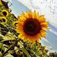 Photo taken at Buttonwood Farm by Jennifer L. on 7/22/2013