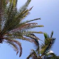Photo taken at Hotel Dorado Beach by Liese V. on 8/16/2014