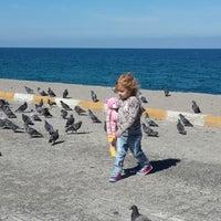 Photo taken at Çatalzeytin Çocuk Parkı by Bilge I. on 10/1/2014
