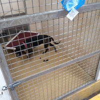 Photo taken at Humane Society of El Paso by Sal D. on 8/29/2014