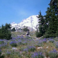 Photo taken at Timberline Lodge by Danny M. on 8/27/2011