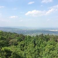 5/27/2016 tarihinde Zsófia K.ziyaretçi tarafından Fenyőgyöngye'de çekilen fotoğraf