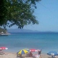 5/20/2013 tarihinde veselina f.ziyaretçi tarafından Didim Beach Resort & Elegance'de çekilen fotoğraf