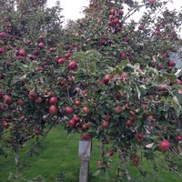 Photo taken at Merridale Estate Cidery by Stephane M. on 10/5/2013