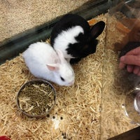 Photo taken at Pet Supermarket by Karl K. on 3/16/2013