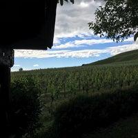 Das Foto wurde bei Weingut Siegloch-klöpfer von Simon T. am 6/7/2017 aufgenommen