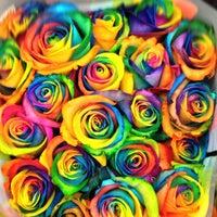 Семь цветов магазин