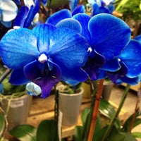 Photo Taken At The Home Depot By Shannon P On 12 8 2012