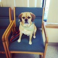Photo taken at Dog and Cat Hospital by Jessica C. on 9/27/2012