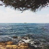 Photo taken at Zelena Laguna by Niccolo' R. on 8/14/2014