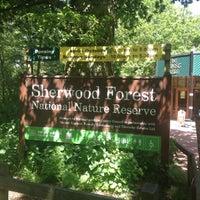 Снимок сделан в Sherwood Forest National Nature Reserve пользователем Michael W. 6/4/2013