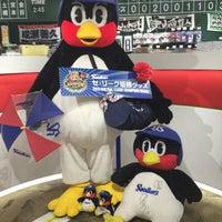 10/29/2015にひらせん@(北)大河原が東京ヤクルトスワローズOfficial Goods Shop つば九郎店で撮った写真
