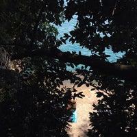 7/17/2014 tarihinde Vedat Ö.ziyaretçi tarafından Akyaka Orman Kampı'de çekilen fotoğraf