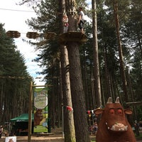 Photo taken at Go Ape Sherwood by Rich H. on 6/8/2014