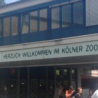 Das Foto wurde bei Kölner Zoo von Isaac C. am 5/9/2013 aufgenommen