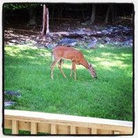 Photo taken at Shenandoah Villa by Charlene D. on 6/23/2013