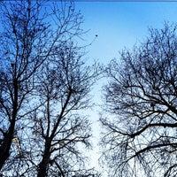 Photo taken at Viale Montenero by Sara T. on 2/20/2015