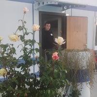 Photo taken at Ulaştırma Bakanlığı denetim istasyonu by ibrahim bayrak 🇦🇱🇹🇷 S. on 11/27/2014
