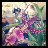 Foto diambil di The Lunch Box oleh Mayka M. pada 10/20/2012