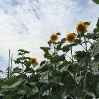 Photo taken at ベアーズ-Bears- 大日 by isacchi i. on 7/17/2014