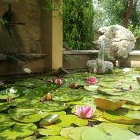 Photo taken at Fonte Bertusi by Bruno P. on 6/6/2013