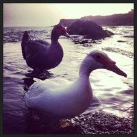 Photo taken at Playa de Charco Verde by Carliconper on 4/21/2013