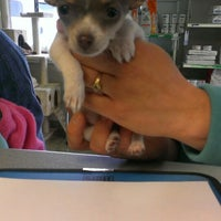 Photo taken at Bountiful Animal Hospital by Maloree C. on 4/18/2013