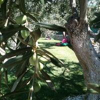 8/27/2014 tarihinde Alena D.ziyaretçi tarafından Assos Park Hotel'de çekilen fotoğraf