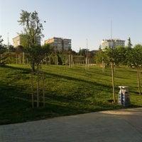 Photo taken at Bakırköy Botanik Parkı by Yusuf D. on 6/24/2013