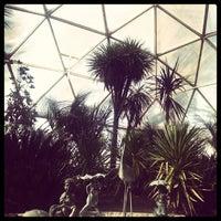 2/16/2014 tarihinde Mehmet K.ziyaretçi tarafından Odunpazarı Botanik Parkı'de çekilen fotoğraf