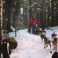 Photo taken at Canadian Wilderness Adventures by Canadian Wilderness Adventures on 1/29/2014