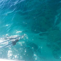 Photo taken at Underseas by Caroline M. on 3/4/2014