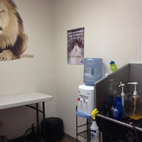 Photo taken at The Main Lion Cat Grooming Salon by Samantah D. on 8/4/2014
