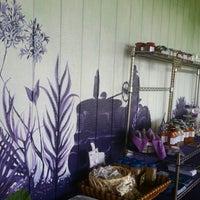 Photo taken at Lavender Farm by Lakshmi R. on 7/1/2014