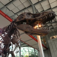 Photo prise au California Academy of Sciences par Austin P. le7/26/2013
