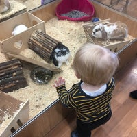 Photo taken at Pets at Home by Dan M. on 4/1/2017