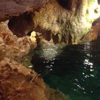 Das Foto wurde bei Cenote San Ignacio von Lily T. am 5/5/2013 aufgenommen