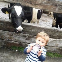 Photo taken at Our Cow Molly Dairy Ice Cream by Our Cow Molly on 3/9/2013