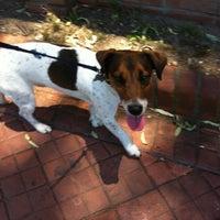 Photo taken at Quinta de Olivos Walking Trail & Dog Run by Federico V. on 12/30/2012
