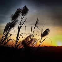 Photo taken at จุดชมวิวเขาสก ทล.401 กม.112 by Evgeniy K. on 1/28/2014