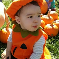 Photo taken at Pumpkins In the Park by Nelson B. on 10/10/2015