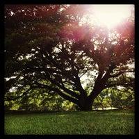 4/27/2013 tarihinde Navaploy K.ziyaretçi tarafından Vachirabenjatas Park (Rot Fai Park)'de çekilen fotoğraf