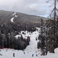 Photo taken at Alp Holiday Dolomiti by Mateusz C. on 2/20/2014