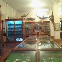 Photo taken at Зоологический музей ОНУ / Zoological Museum ONU by Angelina G. on 5/16/2013