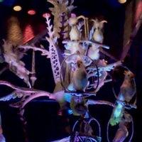 Photo taken at Walt Disney's Enchanted Tiki Room by Betsy R. on 11/17/2011
