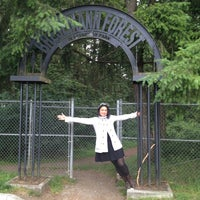 Photo taken at Spanaway Park by Sofia M. on 6/20/2013