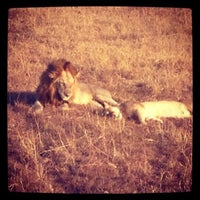 Photo taken at Mikumi National Park by Valeria L. on 6/28/2013