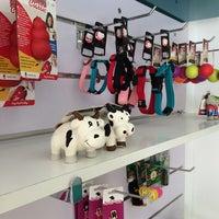 Foto tomada en Dubi Du, peluquería canina y complementos para mascotas por Ramiro S. el 4/20/2014