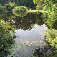 Photo taken at Hidden Alligator Pond by Kevin R. on 5/24/2014