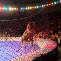 Снимок сделан в Національний цирк України / National circus of Ukraine пользователем Pavel B. 6/23/2013